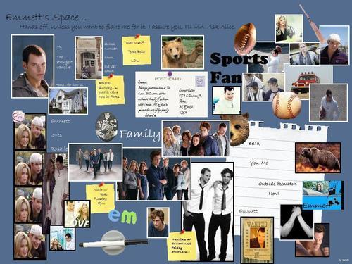 Emmett board collage