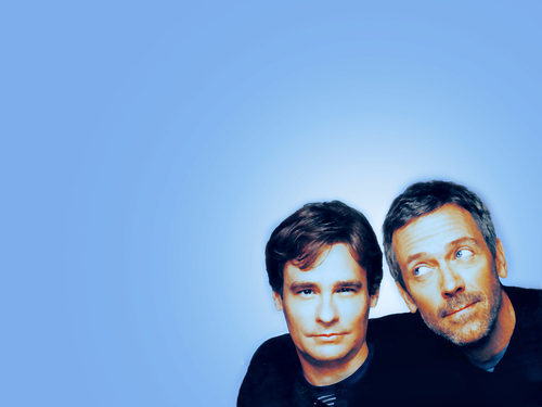 House M.D. wallpaper with a portrait entitled House and Wilson