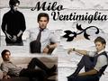 Milo Wallpaper