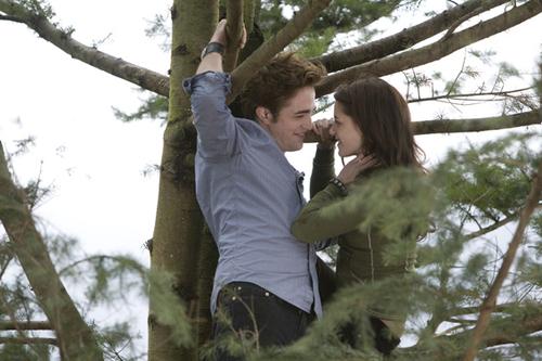 más Twilight!