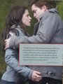 Movie Companion Book Photos - twilight-series photo
