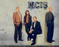 ncis - NCIS wallpaper wallpaper