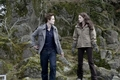 New Twilight Stills - twilight-series photo