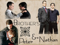 Peter/Nathan Brother Wallpaper