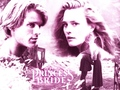 Princess Bride - the-princess-bride wallpaper
