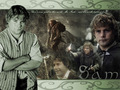 lord-of-the-rings - Samwise Gamgee wallpaper