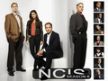 ncis - Season 6 wallpaper