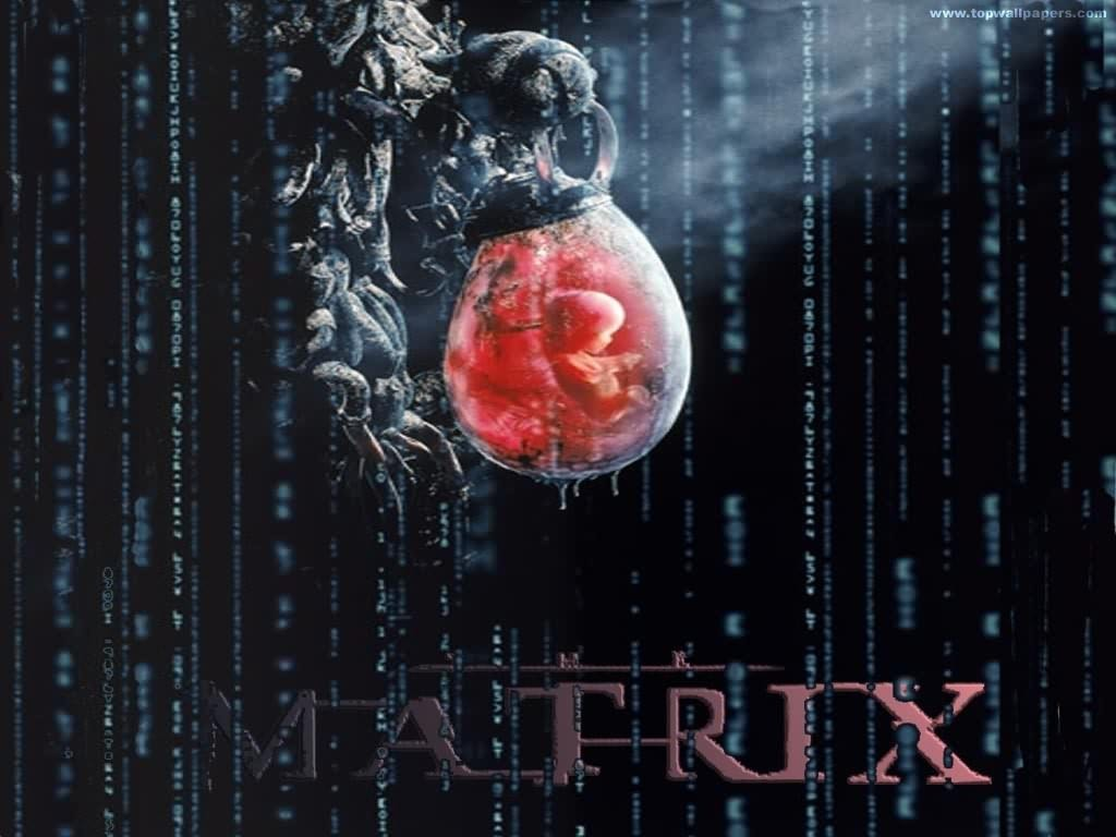 http://images1.fanpop.com/images/photos/2500000/The-Matrix-Wallpaper-the-matrix-2528205-1024-768.jpg