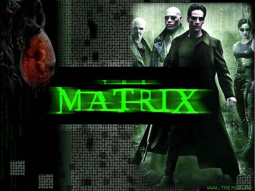 The Matrix wallpaper probably containing a sign titled The Matrix Wallpaper