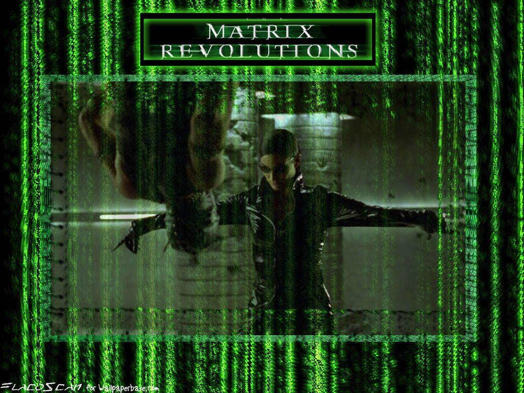 The Matrix Wallpaper - The Matrix Wallpaper (2528215) - Fanpop