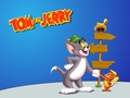 Tom and Jerry fondo de pantalla