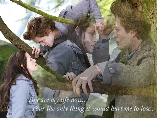 Twilight- Edward & Bella