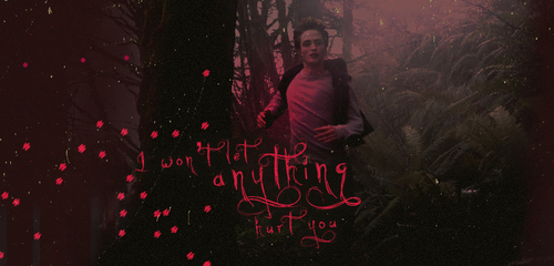 Twilight Movie [Edward & Bella] - Headers