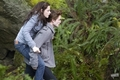 Twilight stills - twilight-series photo