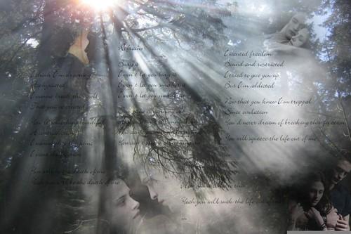 Twilight 壁纸