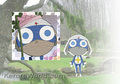 dororo wallpaper - sgt-frog-keroro-gunso photo