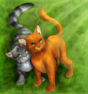 firestar and graystripe