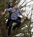 haha look at bella - twilight-series photo