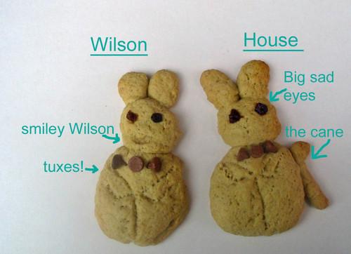 house and wilson 饼干