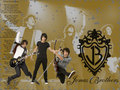 Jonas Brothers Wallpaper - the-jonas-brothers wallpaper