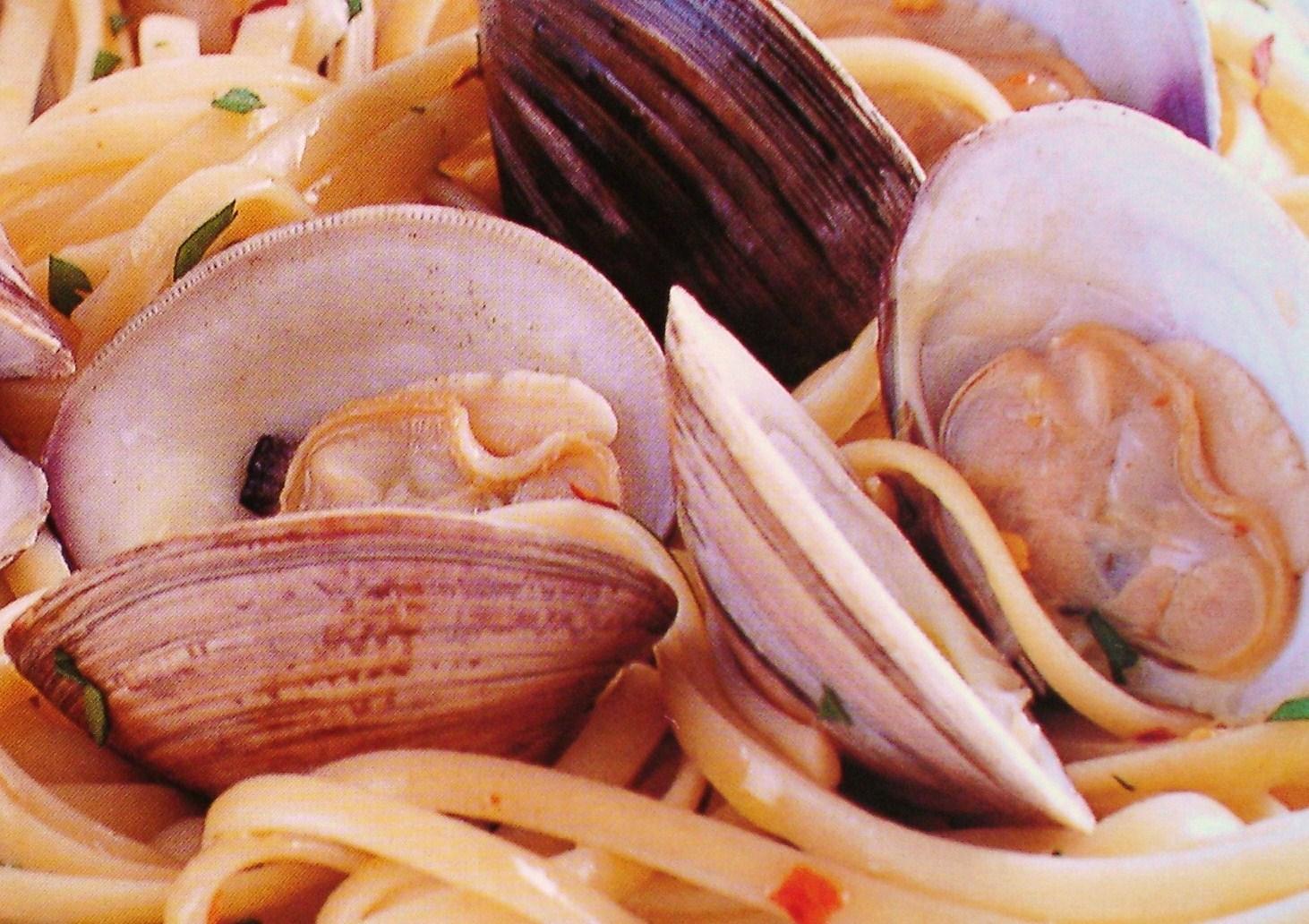 italian food - Italian Food Photo (2543696) - Fanpop
