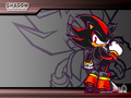shadow sonic battle