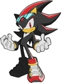 sonic riders shadow - shadow-and-rouge photo