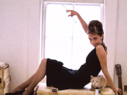 Breakfast At Tiffany's wolpeyper probably with a kitten, a tom, and a living room titled tiffany's wolpeyper
