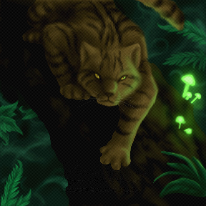http://images1.fanpop.com/images/photos/2500000/warriors-warrior-cats-2582286-700-700.jpg