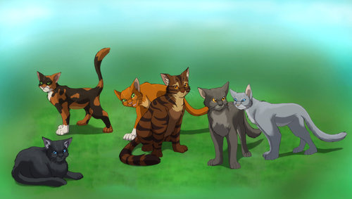 warrior cats images warriors hd wallpaper and background