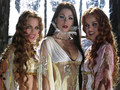 Brides - van-helsing photo