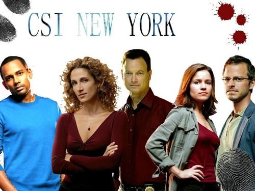 Les Experts NY
