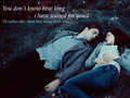 Edward & Bella  - twilight-series wallpaper