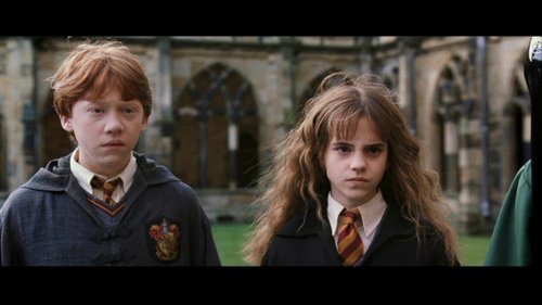 romione wallpaper possibly with a business suit and a portrait titled Ron & Hermione Screencaps [Chamber of Secrets]