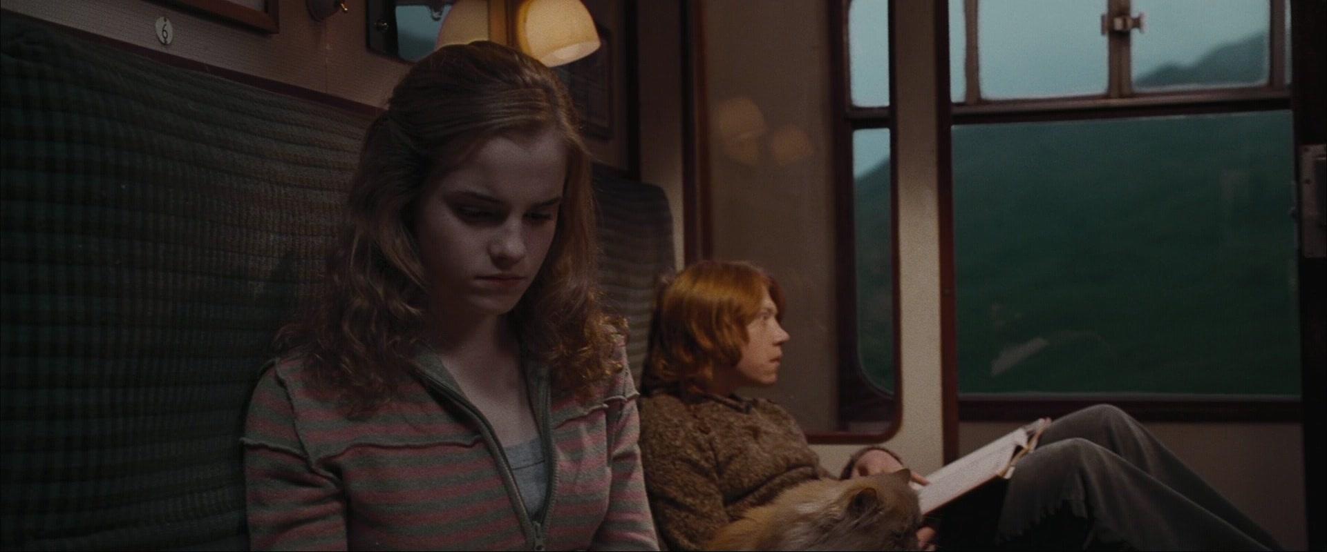 Ron & Hermione Scr...