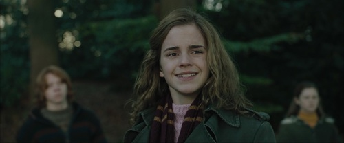 Romione wallpaper probably containing a portrait called Ron & Hermione Screencaps [Goblet of Fire]