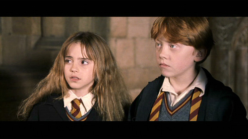 Romione wolpeyper containing a business suit and a suit entitled Ron & Hermione Screencaps [Harry Potter and the Sorcerer's Stone]
