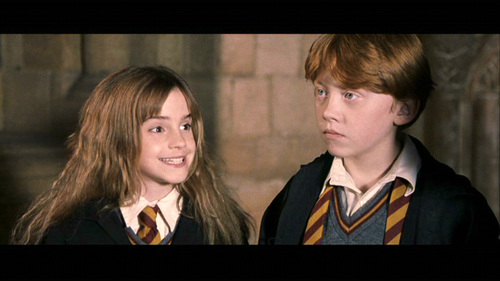 Romione wolpeyper with a business suit titled Ron & Hermione Screencaps [Harry Potter and the Sorcerer's Stone]