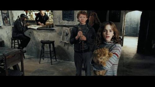 romione wallpaper possibly containing a brasserie, a family room, and a living room called Ron & Hermione Screencaps [Prisoner of Azkaban]