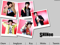 SHINee Wallpapaer - shinee wallpaper