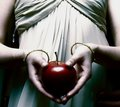 The Forbidden Fruit - twilight-series photo