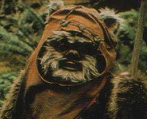 Related Pictures star wars and ewoks