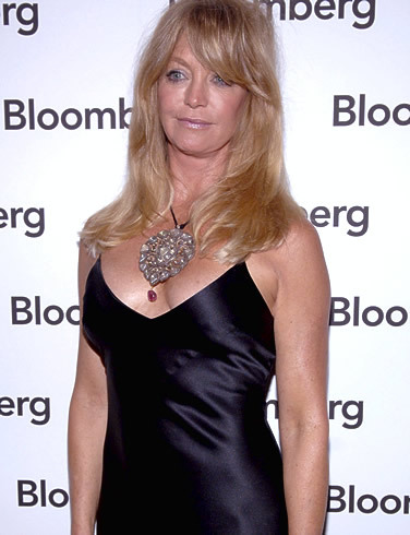 Goldie Hawn plays in all these movies EXCEPT?