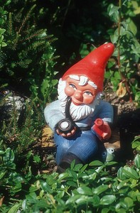 Jess steals one of Babette's garden gnomes. What was his name?