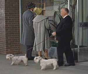 HITCHCOCK CAMEO: In which film is Hitchcock seen leaving a pet shop with dogs?