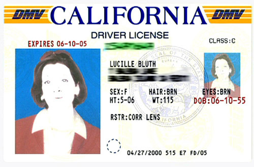 Who made Lucille Bluth's fake driver's license?