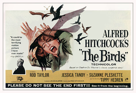 What was name of the town in which 'The Birds' was set?