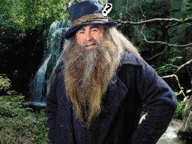 What was the colour of the feather in Tom Bombadil's hat?