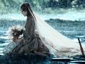 What ruined Elizabeth's wedding?