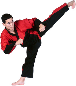 What country did Taekwondo originate from?